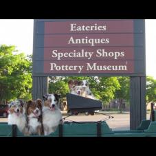 Breeders Near Me   Free Dog & Cat Breeder Directory